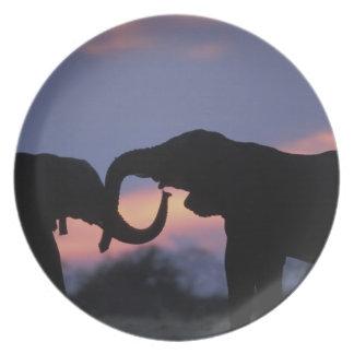 Botswana, Chobe National Park, Elephants Melamine Plate