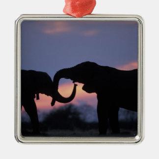 Botswana, Chobe National Park, Elephants Metal Ornament