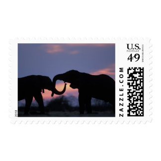 Botswana, Chobe National Park, Elephants Postage