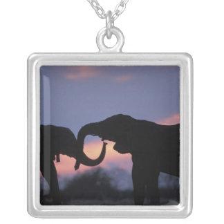 Botswana, Chobe National Park, Elephants Square Pendant Necklace