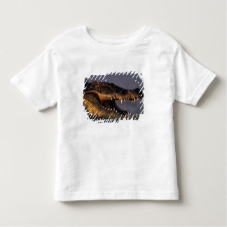 Botswana, Chobe National Park, Nile Crocodile Shirt