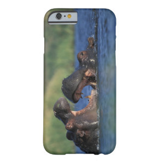 Botswana, Moremi Game Reserve, Hippopotami Barely There iPhone 6 Case