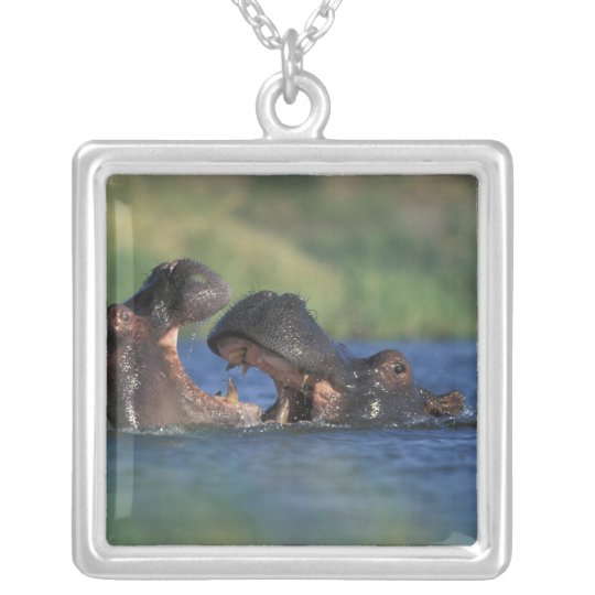 Botswana, Moremi Game Reserve, Hippopotami Silver Plated Necklace