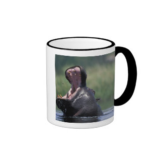 Botswana, Moremi Game Reserve, Hippopotamus Ringer Mug