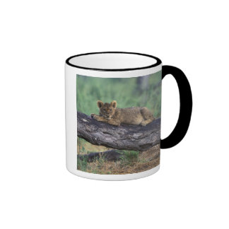 Botswana, Moremi Game Reserve, Lion cub Coffee Mug