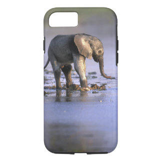 Botswana, Moremi Game Reserve, Young Elephant iPhone 7 Case