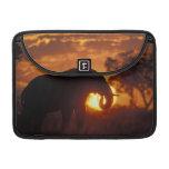 Botswana, parque nacional de Chobe, elefante de Bu Funda Macbook Pro