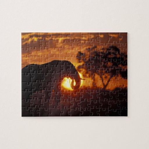 Botswana, parque nacional de Chobe, elefante de Bu Puzzle