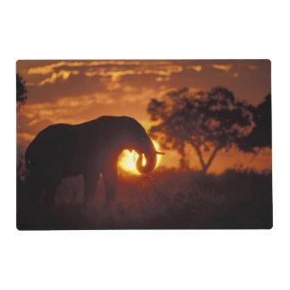 Botswana, parque nacional de Chobe, elefante de Tapete Individual