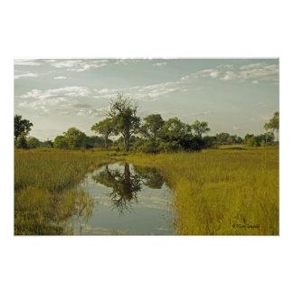 BOTSWANA SCENIC REFLECTIONS PHOTOGRAPHIC PRINT