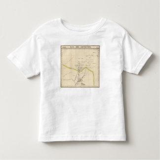 Botswana, South Africa 51 Toddler T-shirt