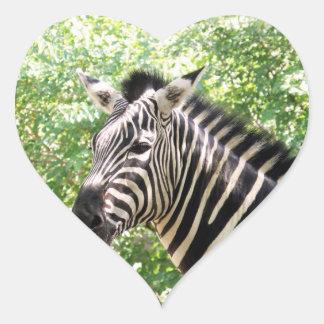 Botswana Heart Sticker
