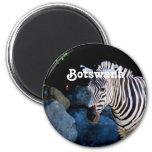 Botswana Zebra 2 Inch Round Magnet