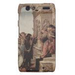 Botticelli Renaissance Painting Droid RAZR Case