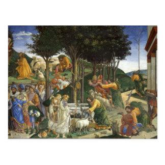 Botticelli Renaissance Painting Postcard