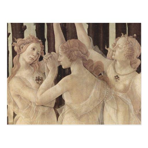 Botticelli's Three Graces Postcard