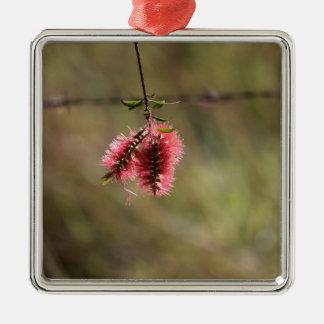 BOTTLE BRUSH FLOWER CALLISTEMON AUSTRALIA METAL ORNAMENT