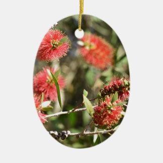BOTTLE BRUSH RED FLOWERS CALLISTEMON AUSTRALIA CERAMIC ORNAMENT