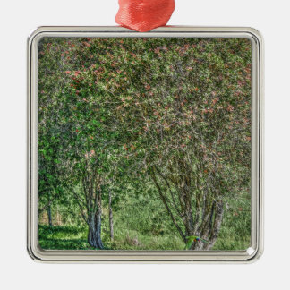 BOTTLE BRUSH TREE AUSTRALIA ART EFFECTS METAL ORNAMENT