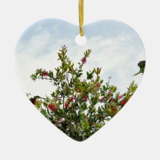 BOTTLE BRUSH TREE CALLISTEMON QUEENSLAND AUSTRALIA CERAMIC ORNAMENT