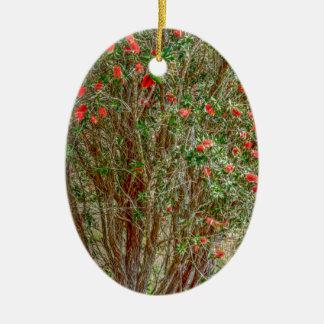 BOTTLE BRUSH TREE RURAL QUEENSALND AUSTRALIA CERAMIC ORNAMENT
