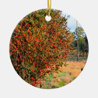 BOTTLE BRUSH TREE RURAL QUEENSLAND AUSTRALIA CERAMIC ORNAMENT