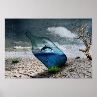 Bottle Dolphin in Dessert Poster