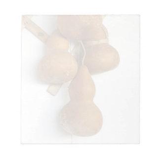Bottle gourds notepad