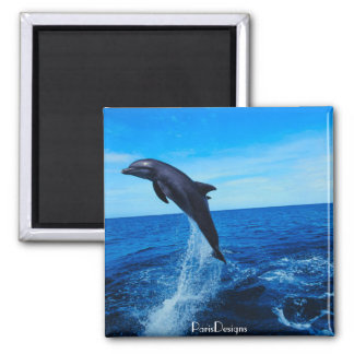 Bottle nose dolphin 2 inch square magnet