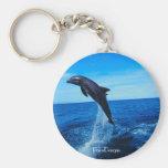 Bottle nose dolphin basic round button keychain