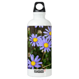 Bottle with Blue Marguerite Flowers