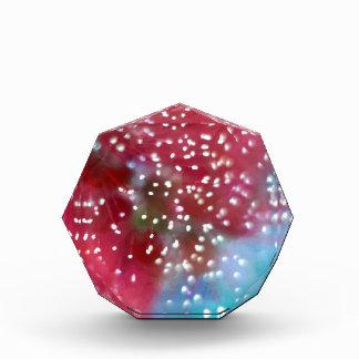 Bottlebrush Flower Abstract Acrylic Award