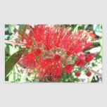 Bottlebrush Flower Red Floral Photography Rectangular Sticker