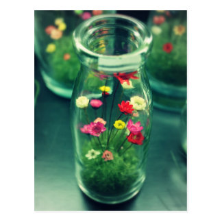 Bottled Flowers Postcard