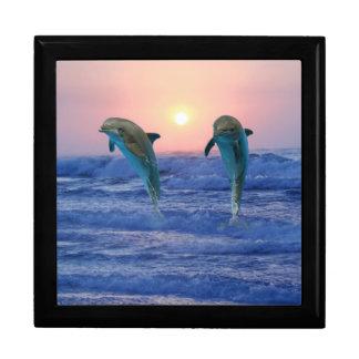 Bottlenose Dolphin at Sunrise Jewelry Box