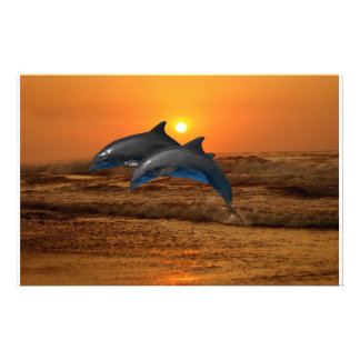 Bottlenose Dolphin at Sunset Stationery