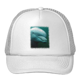 Bottlenose Dolphin Baseball Hat
