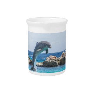 Bottlenose Dolphin Beverage Pitcher