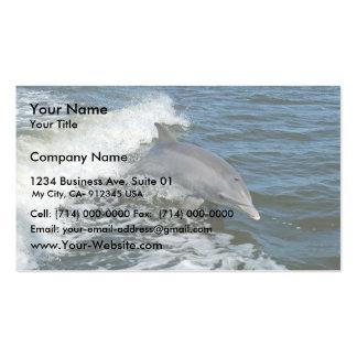 Bottlenose dolphin business card