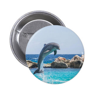 Bottlenose Dolphin Button