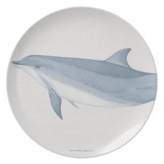 Bottlenose Dolphin Dinner Plate