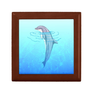 Bottlenose Dolphin Jewelry Boxes
