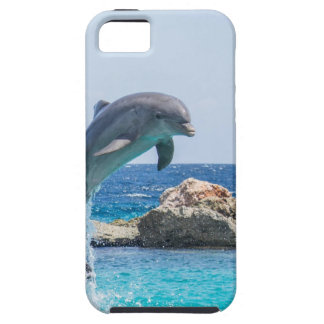 Bottlenose Dolphin iPhone SE/5/5s Case