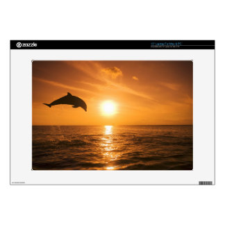 "Bottlenose Dolphin jumping 15"" Laptop Skins"