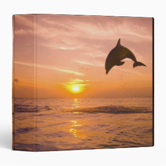 Bottlenose Dolphin jumping 2 Binders