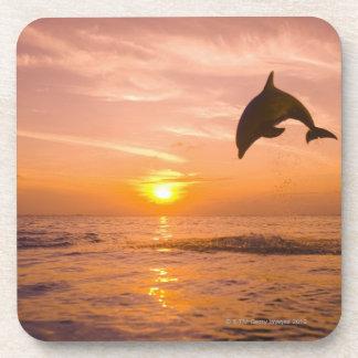 Bottlenose Dolphin jumping 2 Drink Coaster