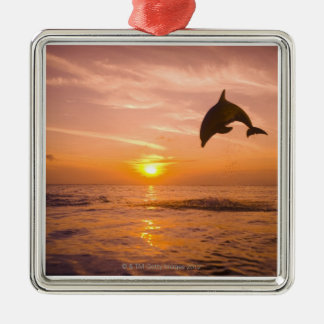 Bottlenose Dolphin jumping 2 Metal Ornament