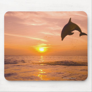 Bottlenose Dolphin jumping 2 Mouse Pad