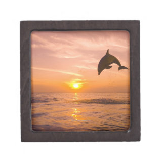 Bottlenose Dolphin jumping 2 Premium Trinket Boxes