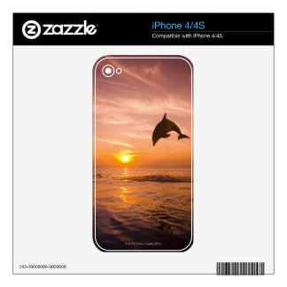 Bottlenose Dolphin jumping 2 Skin For iPhone 4